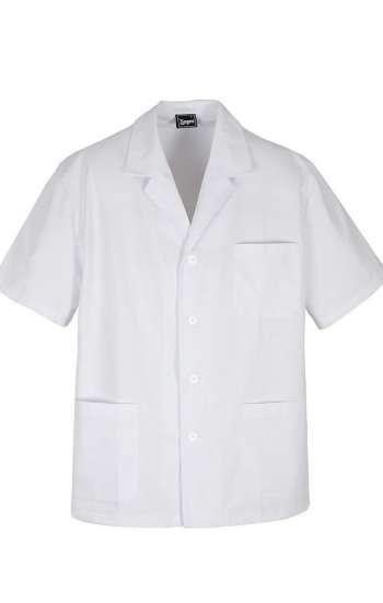 Mẫu áo blouse trắng tay ngắn có cổ